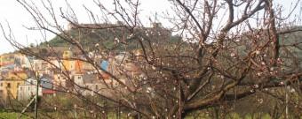 Il Castello di Bosa tra la natura